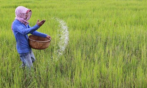 Cambodian farming.jpg