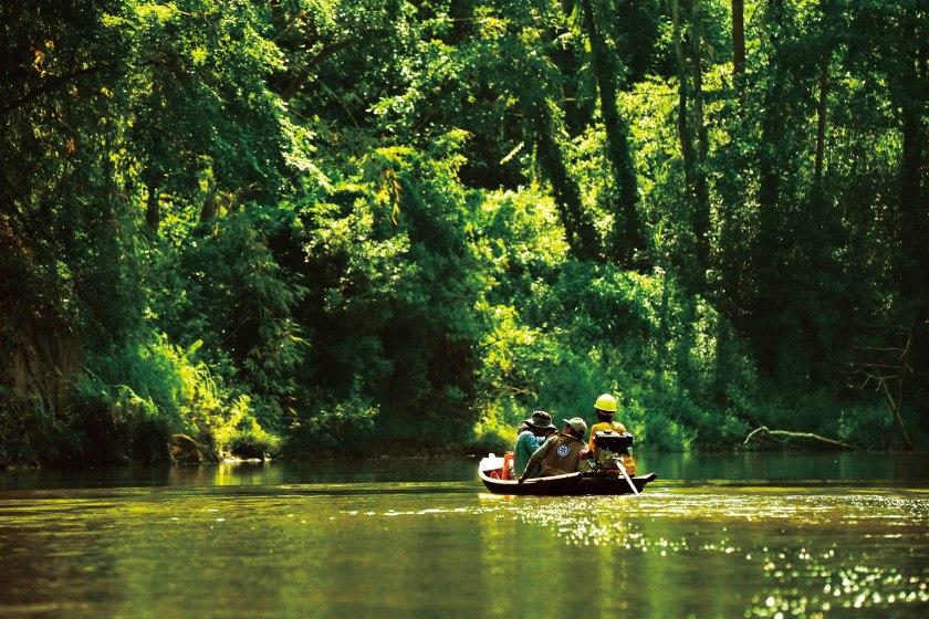 20190520-缅甸实皆省德曼迪野生生物保护区-第八次中缅生物多样性联合科考-谢震霖 拍摄.jpg